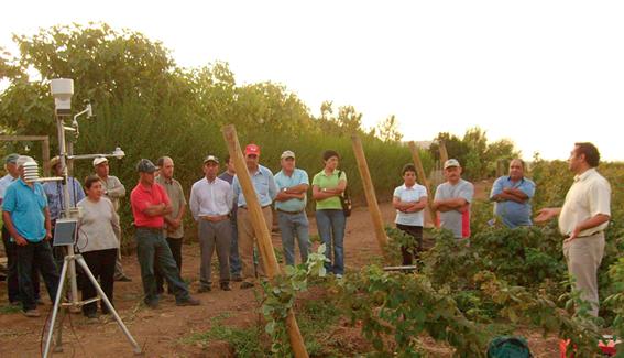 Plataforma satelital creada por CITRA de la UTalca mejorará aprovechamiento del agua para uso agrícola en el Maule